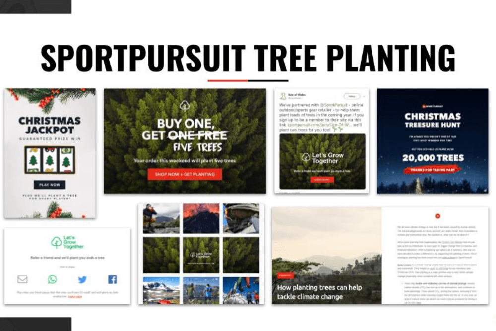 Making planting trees part of an online retail experience